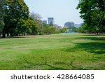 green grass field in big city... | Shutterstock . vector #428664085