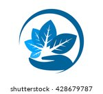 blue herbal leaves leaf plant... | Shutterstock .eps vector #428679787