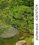 japanese garden in ohori park ... | Shutterstock . vector #428707174