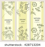 organic cosmetic eco products.... | Shutterstock . vector #428713204