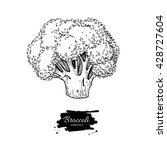 broccoli hand drawn vector... | Shutterstock .eps vector #428727604