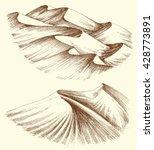 desert sand dunes | Shutterstock .eps vector #428773891