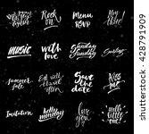 big summer handdrawn lettering...   Shutterstock .eps vector #428791909