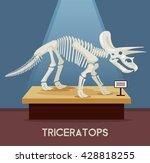 triceratops bones skeleton in... | Shutterstock .eps vector #428818255