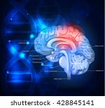 human brain abstract scientific ... | Shutterstock .eps vector #428845141