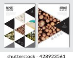 business brochure design... | Shutterstock .eps vector #428923561