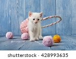 White Kitten With Pink Wool...