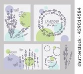 backgrounds with with lavender... | Shutterstock .eps vector #429014584