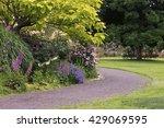 path at the owens rose garden... | Shutterstock . vector #429069595