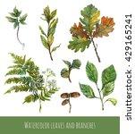 Watercolor Set Of Green Plants...