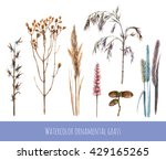 Watercolor Set Of Ornamental...