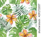 tropical flowers with palm... | Shutterstock . vector #429172357