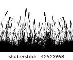 real grass vector silhouette  ... | Shutterstock .eps vector #42923968