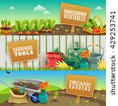 three colorful gardening... | Shutterstock .eps vector #429253741