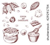 vector cocoa set on white... | Shutterstock .eps vector #429291754