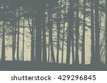 gray colors silhouettes of... | Shutterstock . vector #429296845