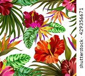 amazing vector tropical flowers ... | Shutterstock .eps vector #429356671