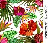 amazing vector tropical flowers ... | Shutterstock .eps vector #429356671