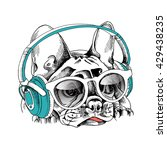 french bulldog portrait in a... | Shutterstock .eps vector #429438235