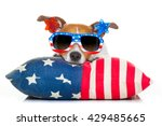 Jack Russell Dog Celebrating...