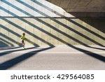 fitness  workout  sport ... | Shutterstock . vector #429564085