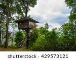 tree house   Shutterstock . vector #429573121