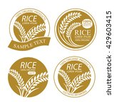 rice. vector illustration. | Shutterstock .eps vector #429603415