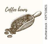 coffee beans in scoop hand... | Shutterstock .eps vector #429710821