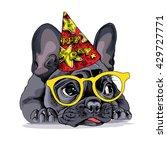french bulldog portrait in a... | Shutterstock .eps vector #429727771