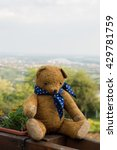 Small photo of Traveler teddy bear up on the mountain