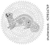 hand drawn ferret in zen tangle ... | Shutterstock .eps vector #429816769