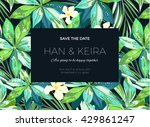 wedding invitation or card... | Shutterstock .eps vector #429861247