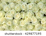 big group of white roses  part... | Shutterstock . vector #429877195