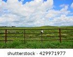 fenced field   Shutterstock . vector #429971977