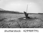 Small photo of The alluvial soil drought sky stump in black and white .