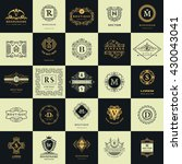 vintage logos design templates... | Shutterstock .eps vector #430043041