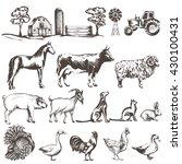 vector set of sketches of farm... | Shutterstock .eps vector #430100431