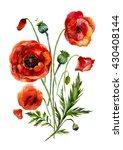 Watercolor Flowers Bouquet....