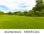 green trees in beautiful park... | Shutterstock . vector #430451161