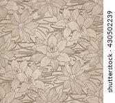 graphic vanilla flowers. vector ... | Shutterstock .eps vector #430502239