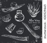 aloe vera hand drawn set....   Shutterstock .eps vector #430529665