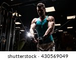 execute exercise with dumbbells | Shutterstock . vector #430569049