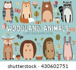 cute woodland animals and... | Shutterstock .eps vector #430602751