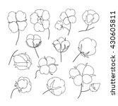 vector set of hand draw outline ... | Shutterstock .eps vector #430605811