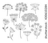 set of vector outline different ...   Shutterstock .eps vector #430610284