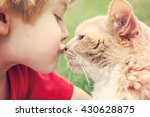 Stock photo best friends boy kissing his cat 430628875