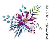 tropical watercolor drawing ... | Shutterstock . vector #430717441
