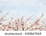 cherry blossoms and blue sky ... | Shutterstock . vector #430867069