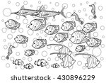 coloring page   fishes under... | Shutterstock .eps vector #430896229