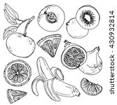 set of fruits drawn a line on a ... | Shutterstock .eps vector #430932814